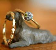 ひし形と丸のリング